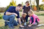 zasadite drvo