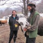 Crna Trava: Pobegli iz Beograda u planinski raj
