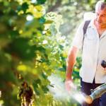 Organski pesticidi iz kućne radinosti