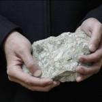 Kamenojedi(silikatne bakterije) u službi biljaka