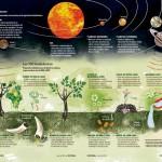 Biodinamička poljoprivreda – razmena energija